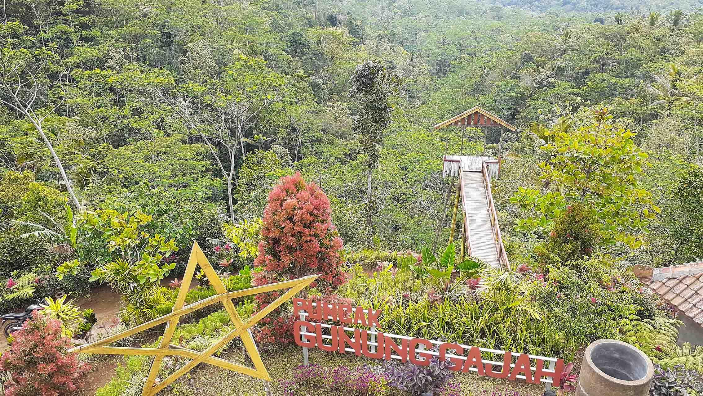 Bertetangga dengan Yogyakarta, Purworejo Miliki Desa Wisata Pandanrejo yang Tak Kalah Indah