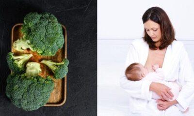 Jangan Diabaikan, Ini 5 Manfaat Konsumsi Brokoli untuk Ibu Menyusui!