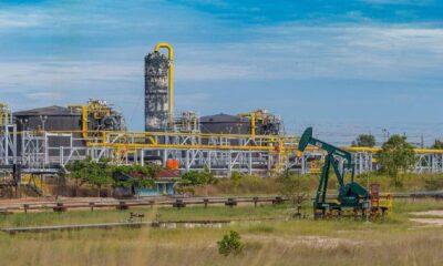 Pertamina Gandeng PLN Amankan 400 MW Listrik Blok Rokan