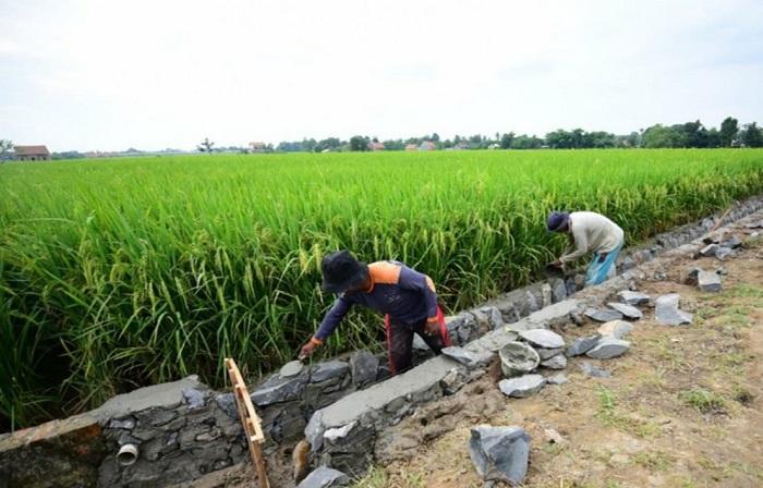 Program Padat Karya di Sulbar Libatkan 3.500 Warga