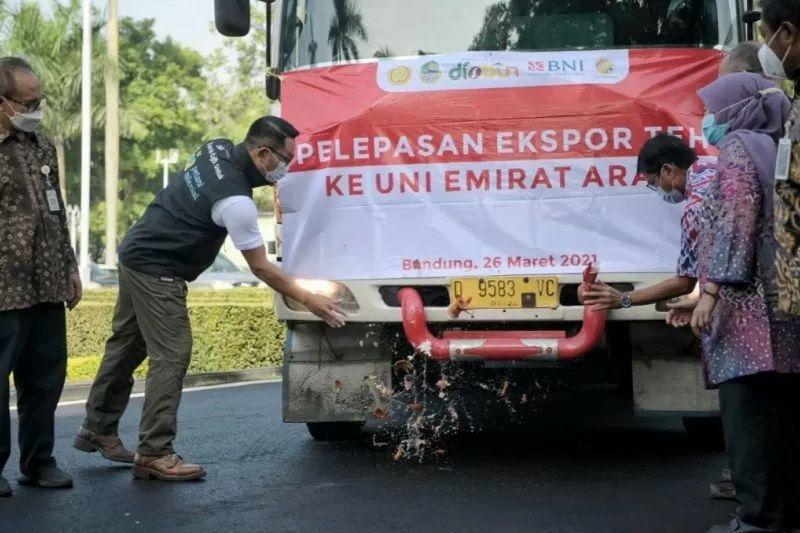 Ridwan Kamil Kawal Pelepasan Ekspor Teh ke UEA Senilai Rp614 Juta
