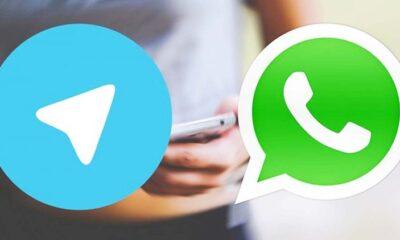 Anda Tipe Apa di Anggota Grup Whatsapps atau Telegram?