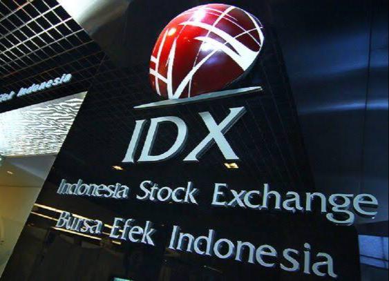 BEI Sebut Pasar Modal Syariah Tumbuh Konsisten, Investor Naik 647%