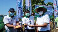 Corporate Farming Jagung, Pertani Lakukan Terobosan Kesejahteraan