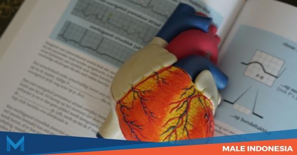 Jangan Lengah, Gagal Jantung Bisa Serang Usia Muda