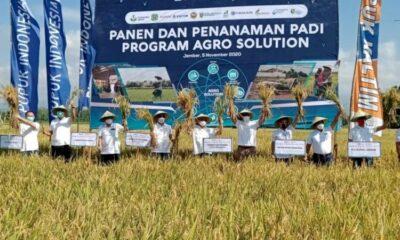 Program Agro Solution Pupuk Indonesia, Tingkatkan Keuntungan Petani 91 Persen