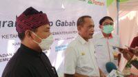 Stabilkan Harga, Kementan Bersama PT Pertani Galakkan Gerakan Serap Gabah Petani