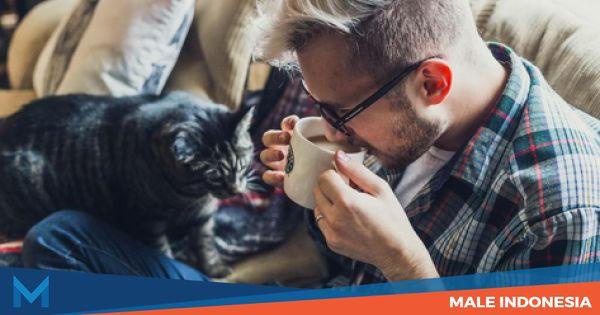 Cara Mengetahui Apakah Anda Pecandu Kafein