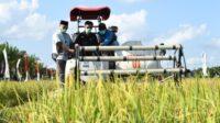 Dapat KUR, Mentan: Tingkatkan Produktivitas Pertanian di Wajo
