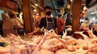 Kemendag Pastikan Indonesia Tak Akan Kebanjiran Ayam Impor