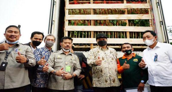 Mentan Lepas Ekspor Florikultura Senilai Rp 70 miliar ke 20 Negara