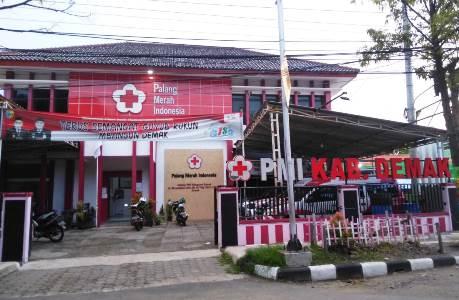Peringati Hari Palang Merah Sedunia, PMI Demak Gelar Kegiatan Donor Darah