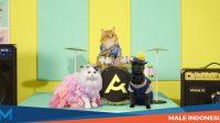 Atome Kittens Luncurkan Get It Week