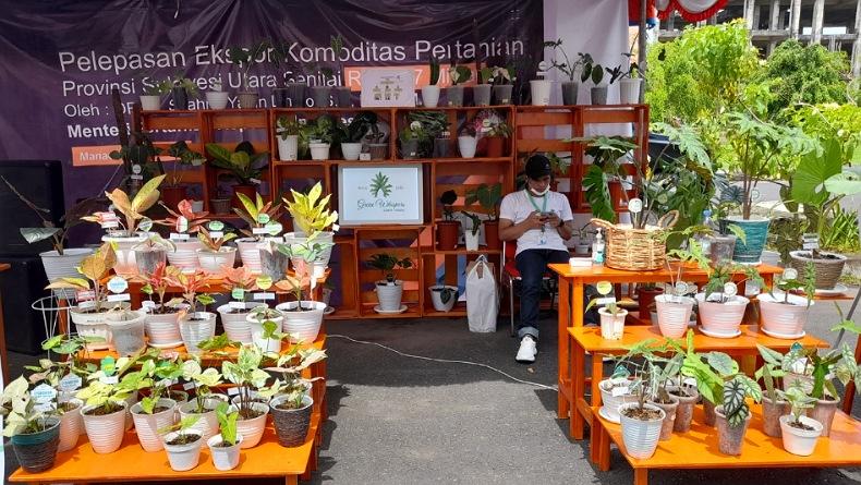 Balai Karantina Pertanian Manado Ekspor 11 Komoditas ke 15 Negara